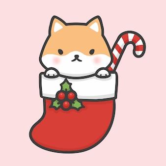 Bonito, shiba, inu, cão, em, meia, natal, mão, desenhado, caricatura, estilo