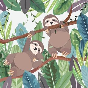 Bonito uma preguiça de casal na floresta tropical botânica.