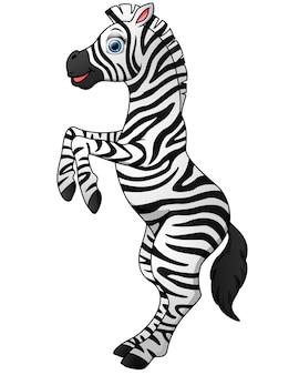 Bonito, zebra, caricatura, ficar