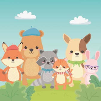 Bonitos e pequenos animais nos personagens de campo