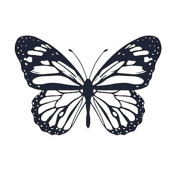 Borboleta fofa com ornamento design da capa do fundo para a página da coloração borboleta realista