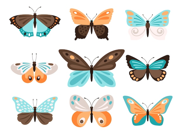 Borboletas coloridas com asas laranja azuis