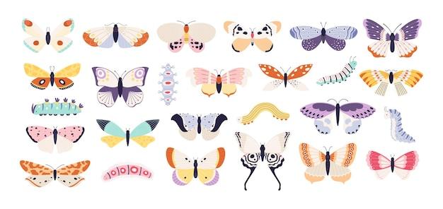 Borboletas e lagartas decorativas. linda exótica borboleta, mariposa e larva. insetos voadores de verão colorido com asas, conjunto de vetores de tatuagem. asas voadoras exóticas e coleção de borboletas na primavera