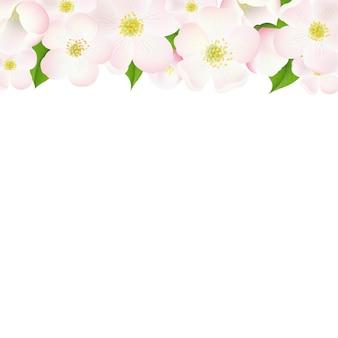 Borda de flores de macieira