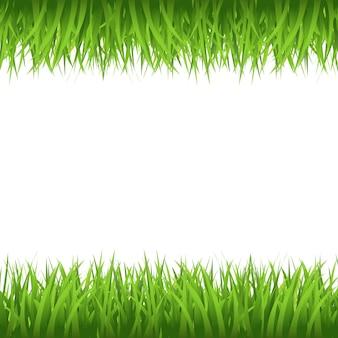 Borda de grama