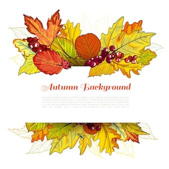 Borda de outono