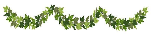 Borda decorativa de trepadeira verde festão de hera