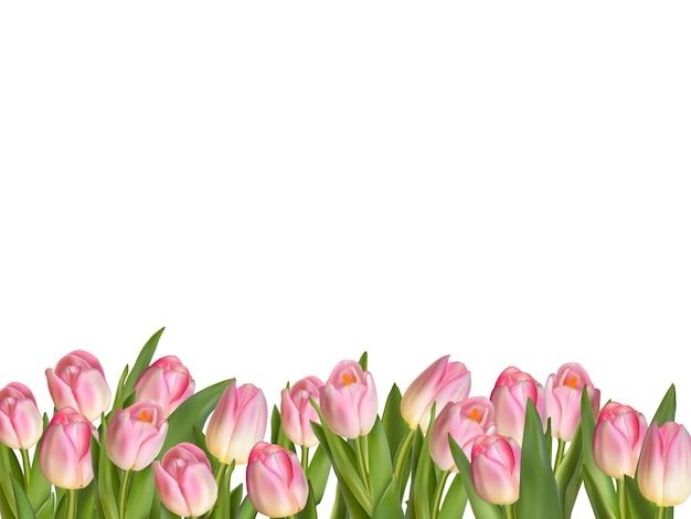 Borda decorativa de tulipas florescendo.