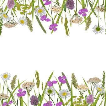 Borda dupla sem costura com erva e flor do campo para estampas têxteis banner alpino com local de texto