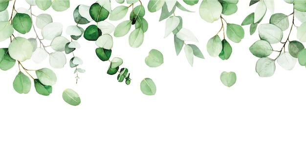 Borda perfeita de folhas e galhos de eucalipto pintados em aquarela