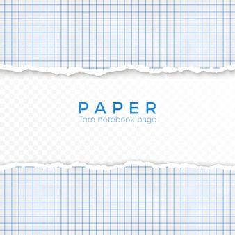 Borda rasgada de papel quadriculado azul