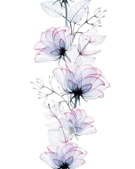 Borda sem costura em aquarela de flores rosas transparentes e folhas de eucalipto isoladas em branco