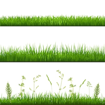 Bordas de grama, com malha gradiente