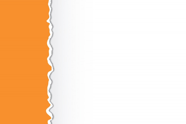 Bordas de papel rasgado multicoloridas. design de arte.