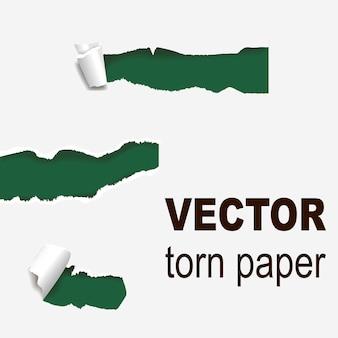 Bordas rasgadas buraco de papel lacerado borda irregular e rachadura ilustração em vetor estilo 3d realista