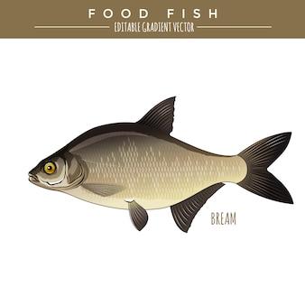 Brema. comida peixe. vetor
