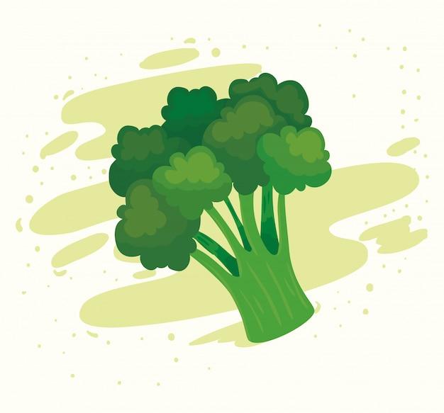 Brócolis vegetal fresco, conceito de comida saudável