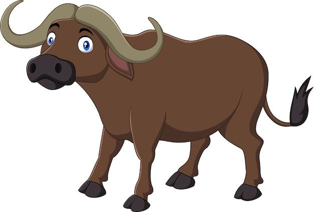 Búfalo dos desenhos animados isolado no fundo branco