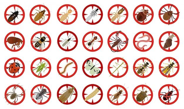 Bug de desenhos animados vetor inseto definir ícone. besouro de inseto de ilustração vetorial. bug de ícone isolado dos desenhos animados e besouro da mosca.