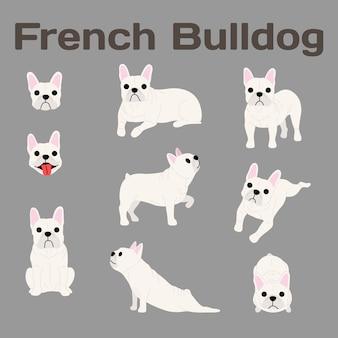 Buldogue francês em ação, cachorro feliz