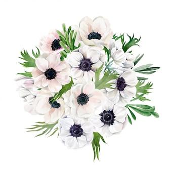 Buquê de anêmonas exuberantes, vista superior, flores brancas, mão desenhada