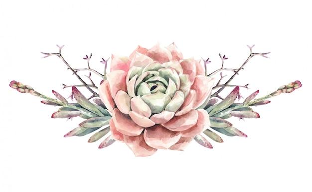 Buquê de cactos e suculentas aquarela cactos. tinta suculenta. pintura de flores rosa.