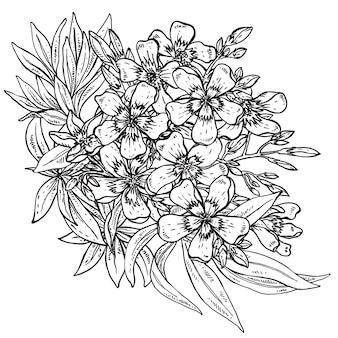 Buquê de flor de rododendro desenhado à mão