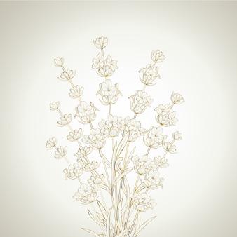 Buquê de flores de lavanda