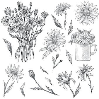 Buquê de flores em flor, camomila na xícara