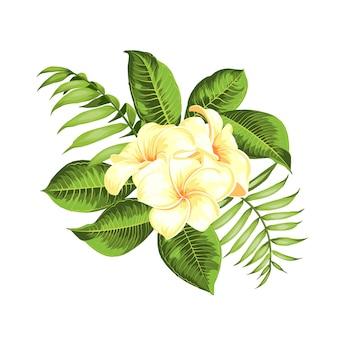 Buquê de flores tropicais para o seu cartão de férias de verão.