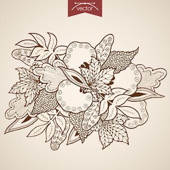 Buquê de folhas de gravura vintage mão desenhada. esboço a lápis herbário de folha de bordo de carvalho