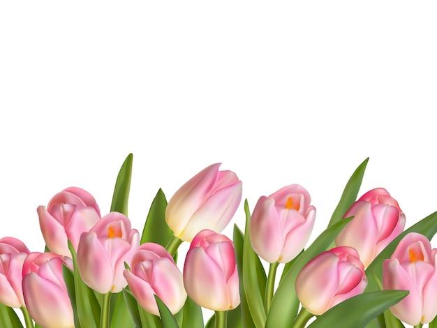 Buquê de tulipa realista linda.