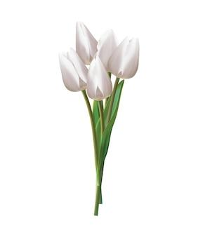 Buquê de tulipas brancas em um branco. ilustração realista