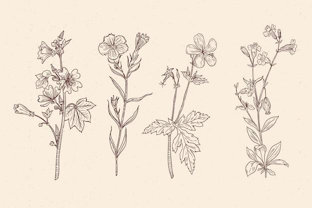 Buquê floral vintage realista mão desenhada