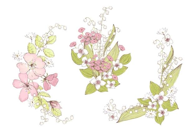 Buquês de vetor lindo, flores silvestres. composições para casamentos