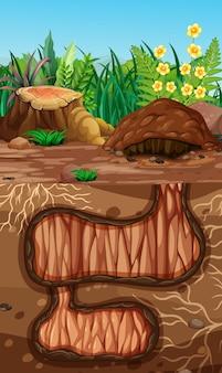Buraco de animais subterrâneo vazio