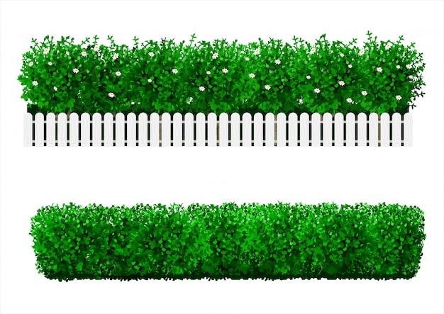 Bush sob a forma de uma cobertura verde Vetor Premium