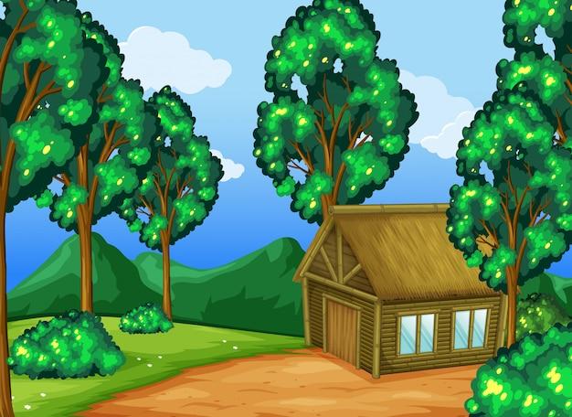 Cabana de madeira na floresta