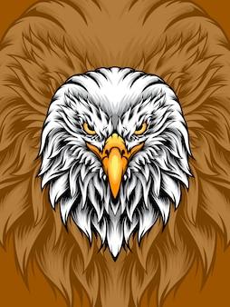 Cabeça de águia branca