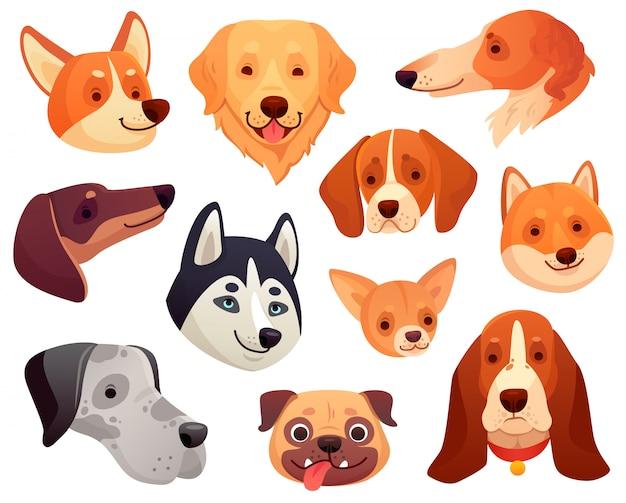 Cabeça de cachorro dos desenhos animados. focinho de animal de estimação engraçado cachorro, sorrindo cara de cachorro e coleção de ilustração de cães