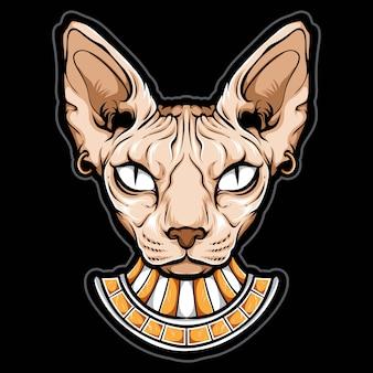 Cabeça de gato sphynx egípcio