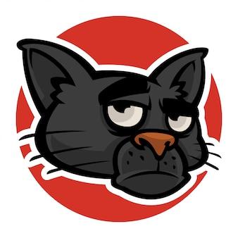 Cabeça de gatos mal