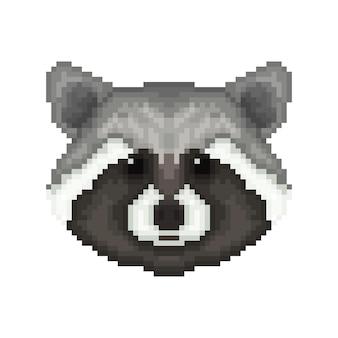 Cabeça de guaxinim no estilo de arte pixel.