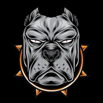 Cabeça de pitbull de raiva
