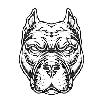 Cabeça de pitbull preto e branco