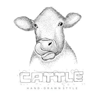 Cabeça de vaca vetorial, ilustração animal desenhada à mão