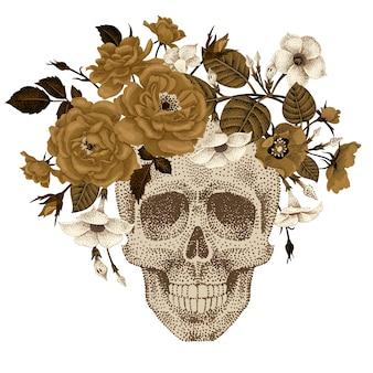 Cabeça morta com uma coroa de flores de hera, rosas isoladas no fundo branco. ilustração de crânio humano e plantas tripas do diabo, peônia, briar
