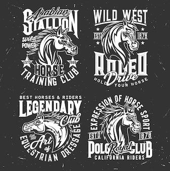 Cabeças de garanhões de cavalos, adestramento equestre, mascotes do clube de pólo desportivo.