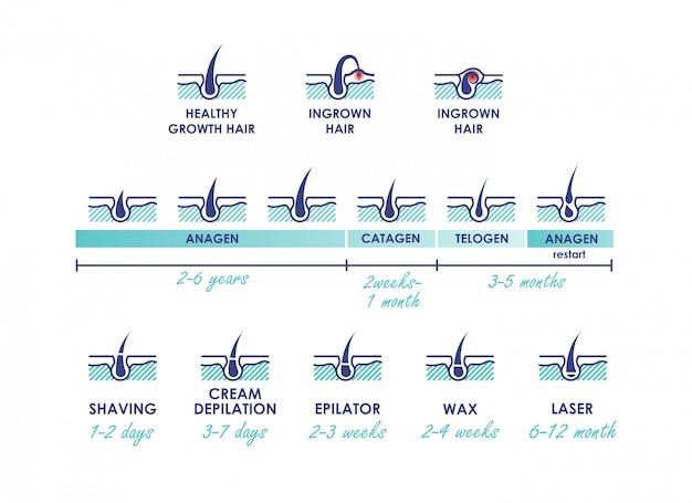 Cabelo crescimento saudável. pelo encravado. fases de crescimento do cabelo. diferentes métodos de depilação. tipos de depilação com ações da linha do tempo