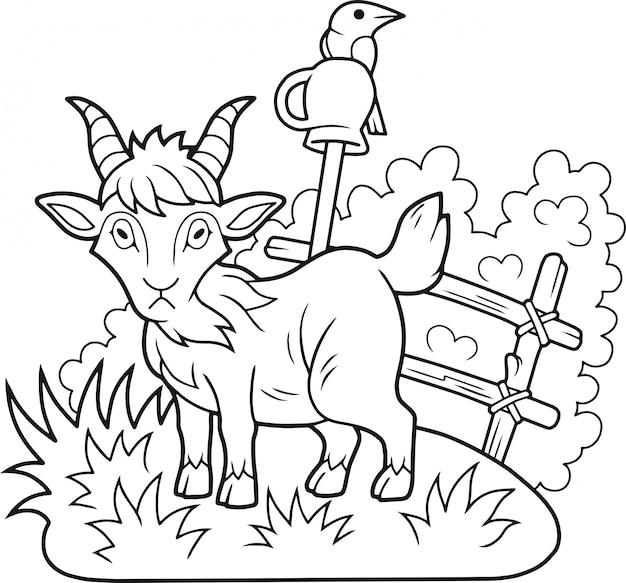Cabra engraçada